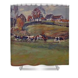 Houses And Cows In Schweiberg Shower Curtain