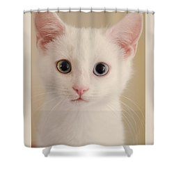 How Can I Help You . . .  Shower Curtain