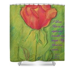 Shower Curtain featuring the drawing How Do I Love Thee ? by Denise Fulmer