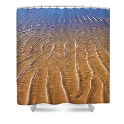 How Many Roads Must A Man Walk Down Shower Curtain