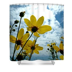 How Summer Feels Shower Curtain by Tim Good