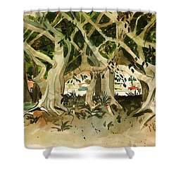 Howley's Banyans Shower Curtain