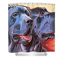 Howy And Iloy Shower Curtain by Nadi Spencer