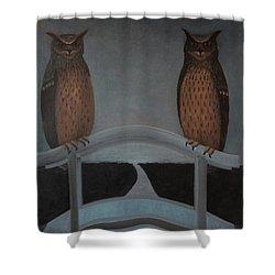 Shower Curtain featuring the painting Hu-hu-bro by Tone Aanderaa