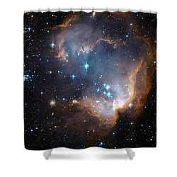 Hubble's View Of N90 Star-forming Region Shower Curtain by Nasa