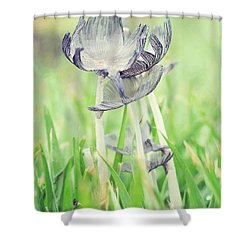 Huddled Shower Curtain