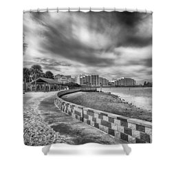 Shower Curtain featuring the photograph Hudson Beach by Howard Salmon