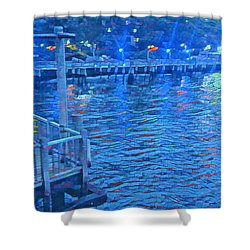 Hudson Electric Shower Curtain