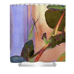 Giant Orb Spider Shower Curtain