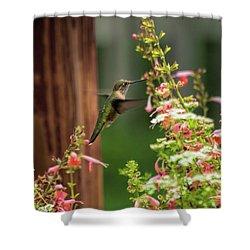 Hum 2 Shower Curtain