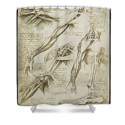 Human Arm Study Shower Curtain by James Christopher Hill
