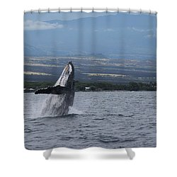 Shower Curtain featuring the photograph Humback Whale by Pamela Walton