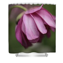 Shower Curtain featuring the photograph Humble Beginnings by Connie Handscomb