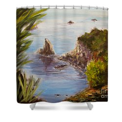 Humboldt Cove Shower Curtain