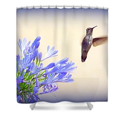 Hummer In Blue Shower Curtain