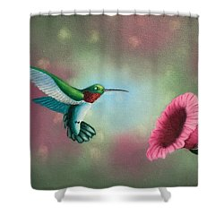 Humming Bird Feeding Shower Curtain