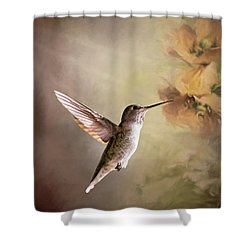 Humming Bird In Light Shower Curtain
