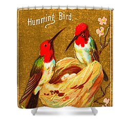 Humming Bird Victorian Tobacco Card By Allen And Ginter Shower Curtain