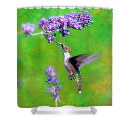 Humming Bird Visit Shower Curtain