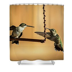 Humming Birds Shower Curtain