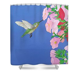 Hummingbird And Petunias Shower Curtain