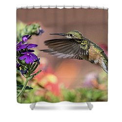 Hummingbird And Purple Flower Shower Curtain