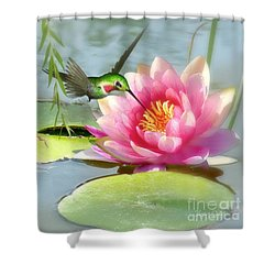 Hummingbird And Water Lily Shower Curtain