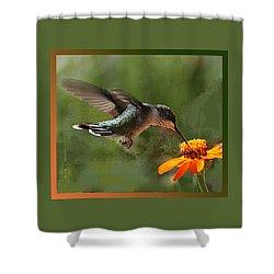 Hummingbird Art Shower Curtain