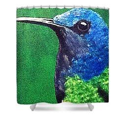 Hummingbird Shower Curtain by Catherine Swerediuk