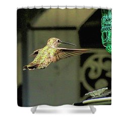 Hummingbird Coming In Shower Curtain