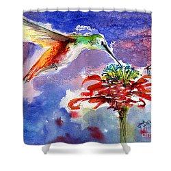 Hummingbird Drinking From Red Flower Shower Curtain