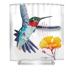Da169 Hummingbird Flittering Daniel Adams Shower Curtain