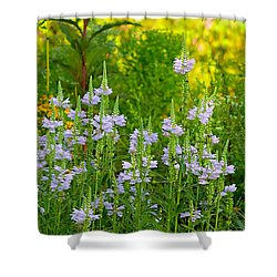 Hummingbird Heaven Shower Curtain