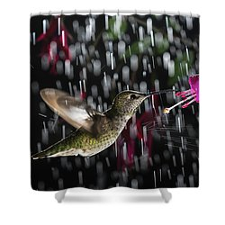 Shower Curtain featuring the photograph Hummingbird Hovering In Rain With Splash by William Lee
