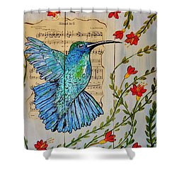 Hummingbird Minuet In G Shower Curtain