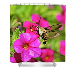 Shower Curtain featuring the photograph Hummingbird Moth by Christina Rollo