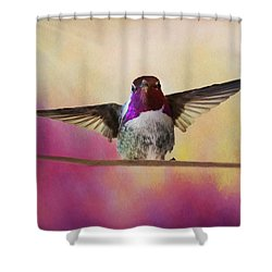Hummingbird On A Wire Shower Curtain