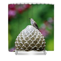 Hummingbird On Garden Water Fountain Shower Curtain by David Gn