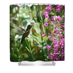 Hummingbird On Perry's Penstemon Shower Curtain by Saija  Lehtonen