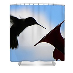 Shower Curtain featuring the photograph Hummingbird Silhouette by Sandi OReilly