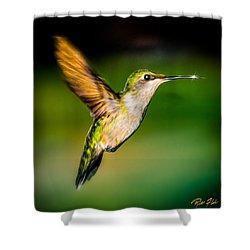 Hummingbird Sparkle Shower Curtain