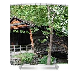 Humpback Bridge Shower Curtain by Eric Liller