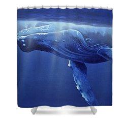 Humpback Portrait Shower Curtain