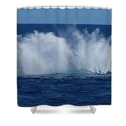Humpback Whale Breaching Close To Boat 23 Image 3 Of 4 Shower Curtain