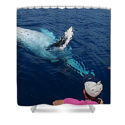 Humpback Whale Reaching Out Shower Curtain by Gary Crockett