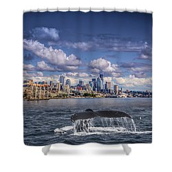 Humpback Whale-seattle Shower Curtain