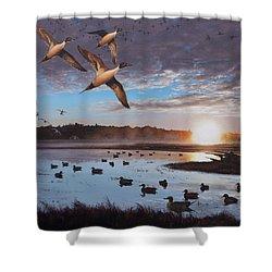 Humphrey Farm Pintails Shower Curtain