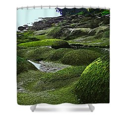 Humps And Bumps, Gabriola Shoreline Shower Curtain