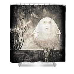 Humpty Dumpty Shower Curtain by Bob Orsillo