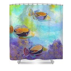 Humuhumu 6 Shower Curtain